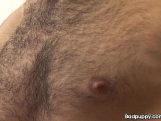Hairy euro stud rubdown