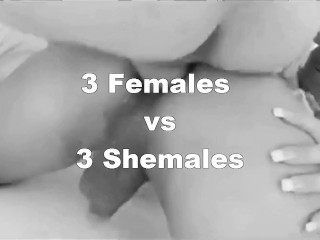 WHO GETS FUCKED DOGGYSTYLE BETTER? FEMALES vs SHEMALES – Episode 6 (ANAL)